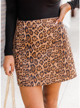 Leopard Above Knee Casual